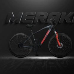 The flagship e-bike of an Indian startup has been launched - Ninety One's Meraki